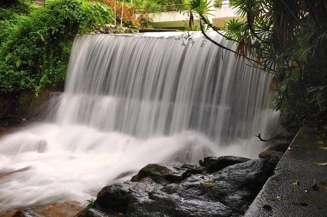 Jardim Botânico de Penang (Taman Botani Penang)