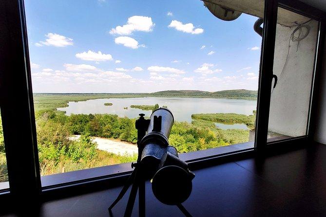 Self-Guided Birdwatching in Srebarna Reserve