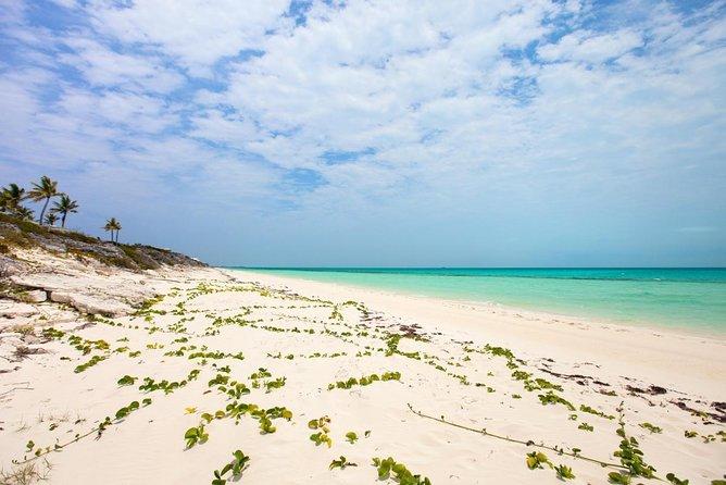 Little Water Cay (Isola Iguana)