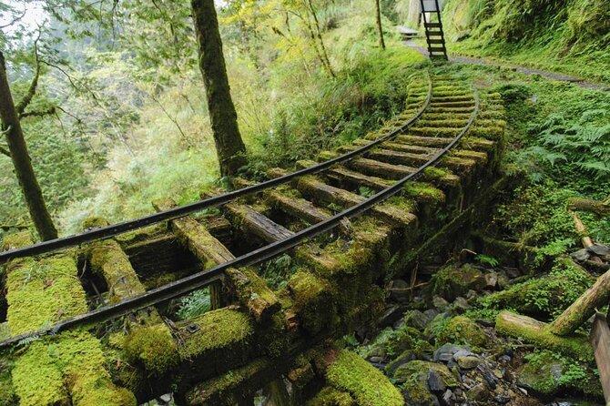 Área de recreação da floresta nacional de Taipingshan