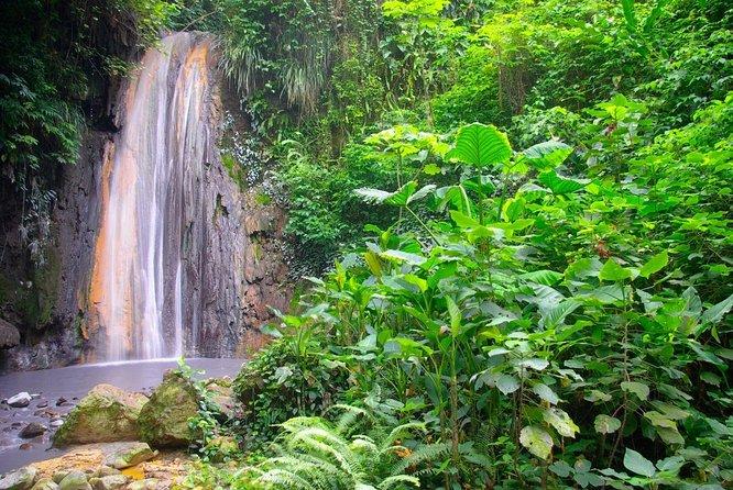 Diamond Falls Botanical Gardens