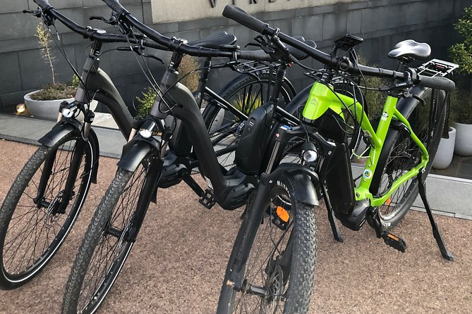 Daily Electric Bike Rental