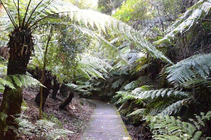 Jardines Botánicos George Brown Darwin