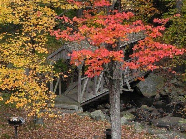 Forêt d'État de Willard Brook