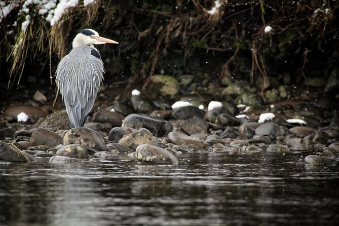 Merkinch Local Nature Reserve