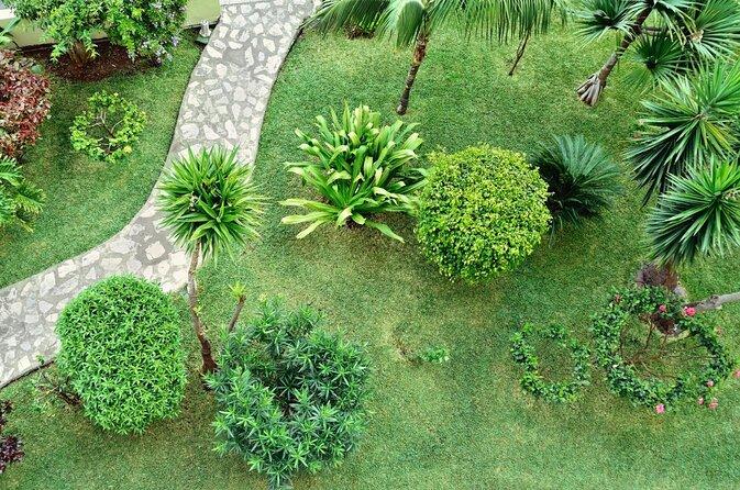 Palmenhainen Garten