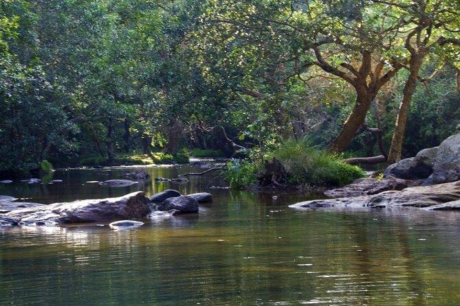 Kaveri River (Kaveri Nadi)