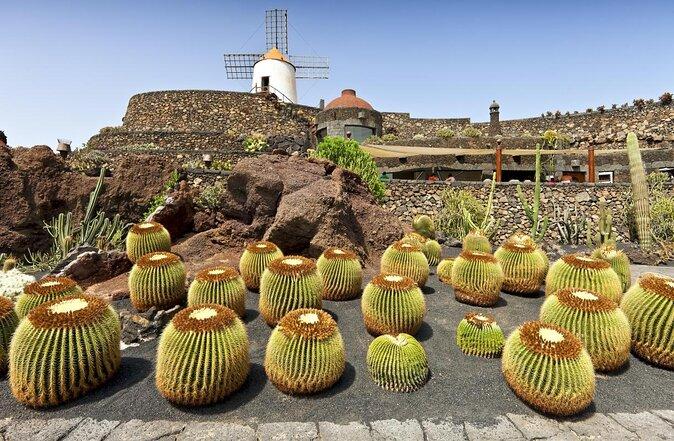 Jardín de Cactus (Kaktusgarten)