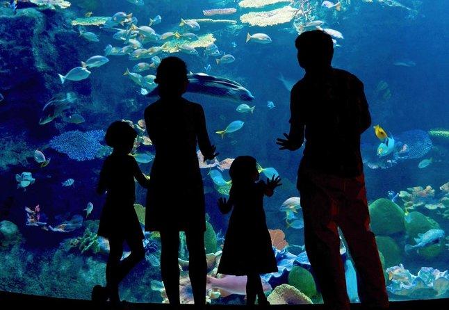 Aquarium d'Inbursa