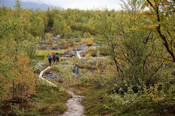 Parque Nacional Pyhä-Luosto
