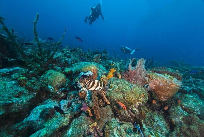 Cades Reef