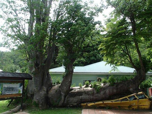 Jardins botaniques de la Dominique
