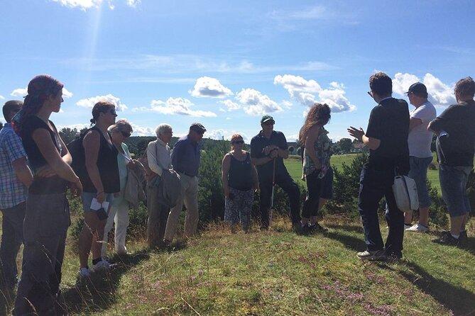 Guided 8h tour with visits to Anundshög, Biskops-Arnö and Sigtuna from Stockholm
