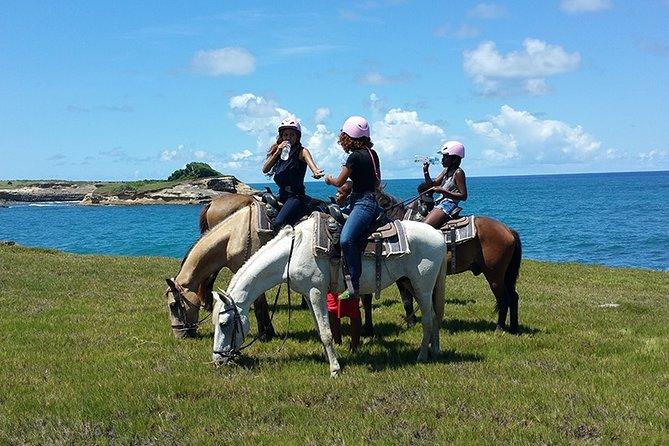 Horseback Riding Adventure Tour in St. Lucia