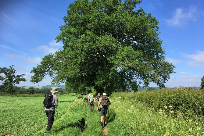 Half-Day Guided Walk from Moreton-in-Marsh