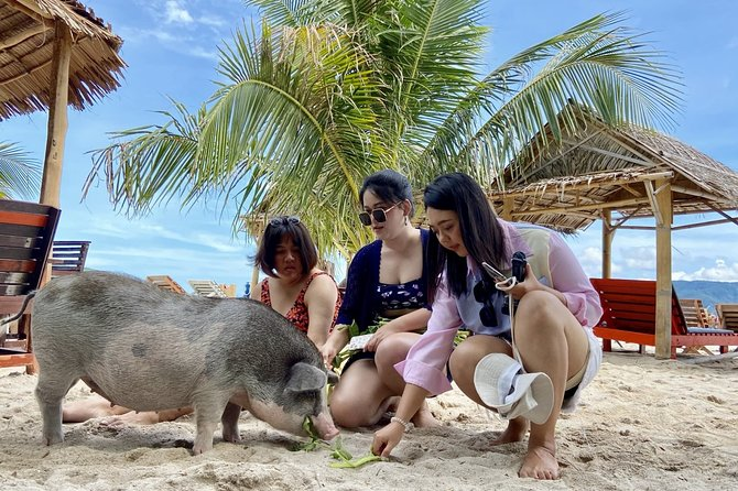 (Private Tour) Pig Island by Speedboat: Snorkel, Kayak, Private Beach Access