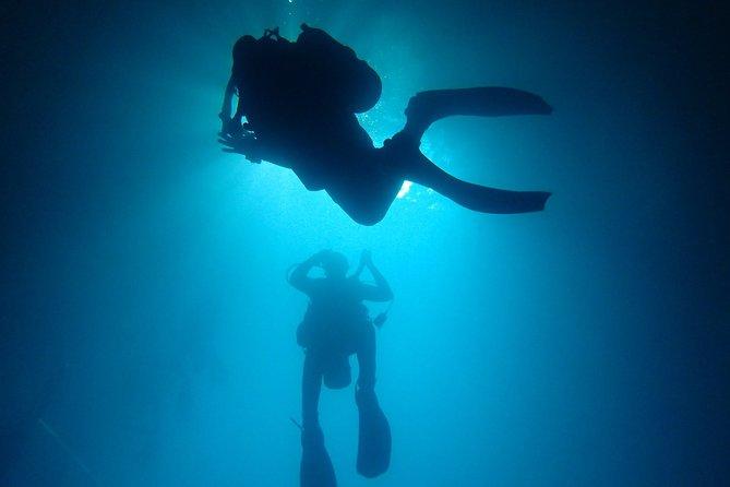 5 Days PADI Diving Course in Florida