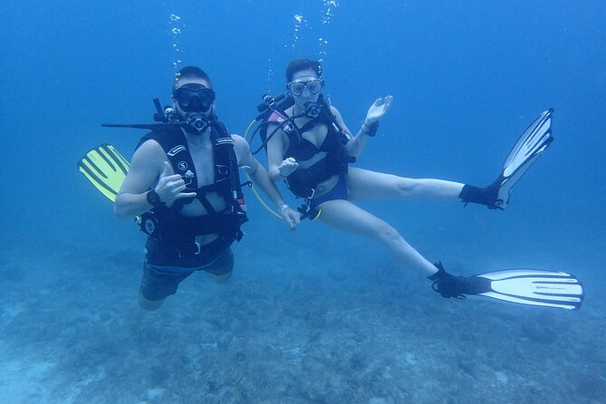 5 Days PADI Diving Course in Florida