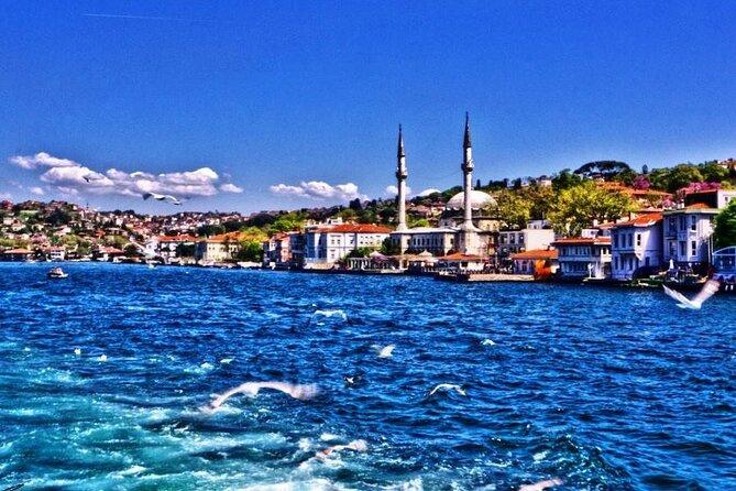 Half Day Morning Bosphorus Cruise Istanbul - IST50