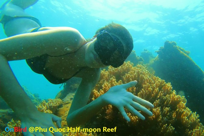 OnBird- PRIVATE SNORKELING CHARTER - Welcome Gloaming in the An Thoi Archipelago