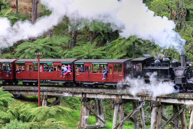 Puffing Billy And Healesville Sanctuary Scenic Tour