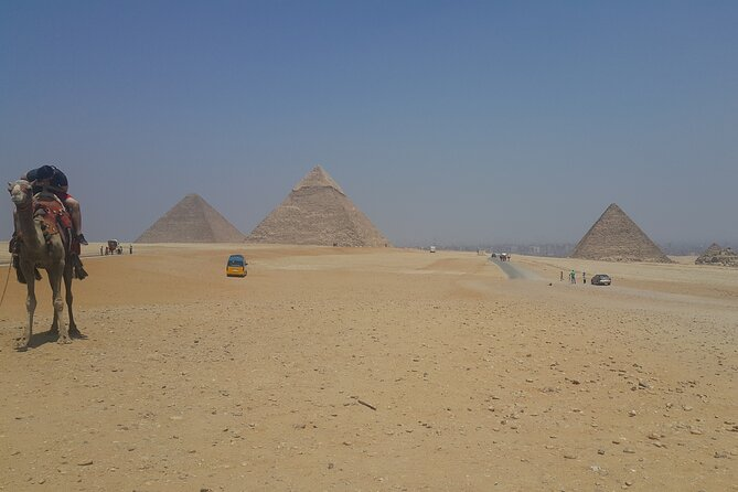 Pyramids of Giza and Egyptian Museum of Cairo Tour