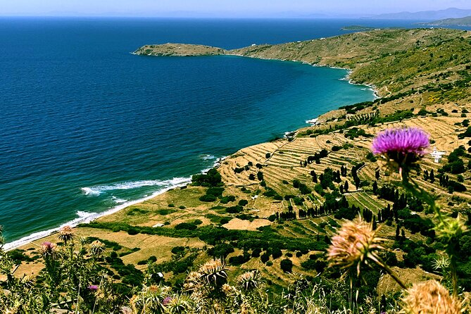 Private Tour from Athens to Andros Island