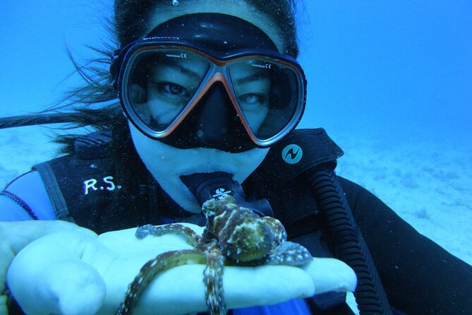 Scuba Shipwreck and Reef Tour for Certified Divers in Honolulu