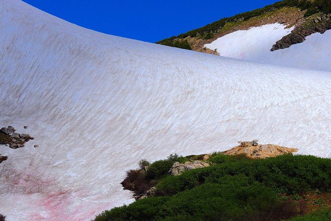 St. Mary's Glacier Hike and Gold Rush Tour in Idaho Springs