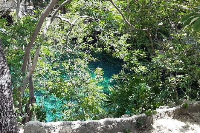 Cenotes Tour Experience from Playa del Carmen