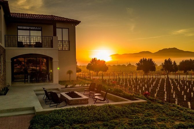 Wine Tasting and Carriage Tour at Premium Winery at Valle de Guadalupe