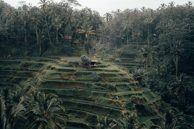 Custom Private Tour: Experience East Bali
