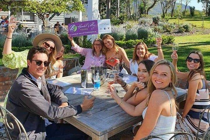 Group bookings in the vineyards