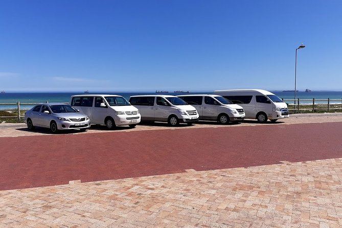 Table Mountain and Robben Island Private Tour