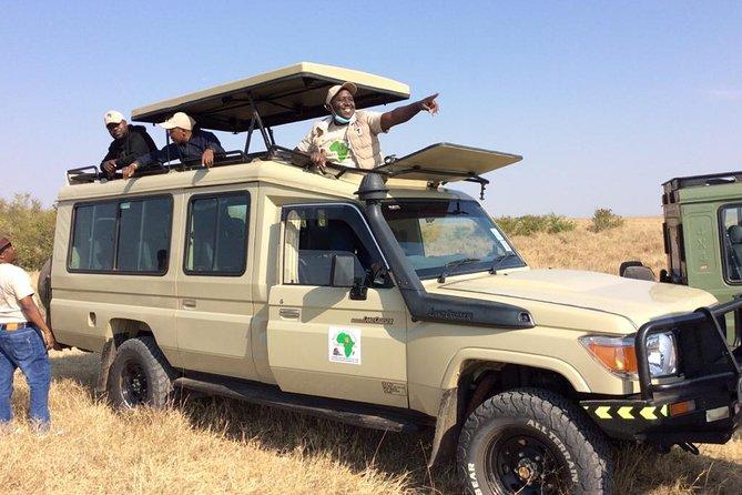 Excursion d'une demi-journée au parc national de Nairobi