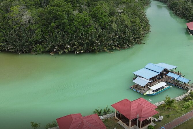 Sedili Wetland River Cruise