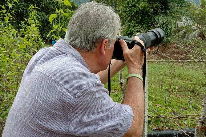 Bird Watching Desaru Coast (vicinity)