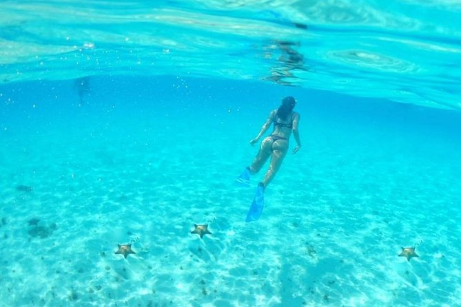 Cozumel Sky Tour with Snorkel All Inclusive