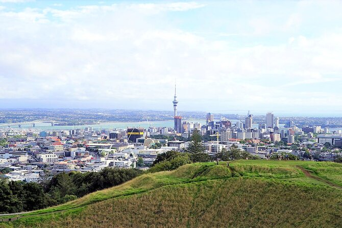 1 Great Day Auckland - City Highlights PREMIUM - Private Tour & Shore Excursion