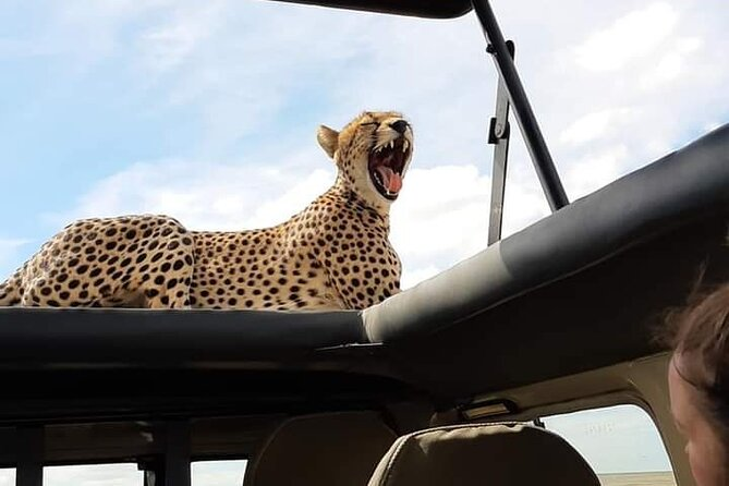 3 Days 2 Nights Serengeti and Ngorongoro Crater