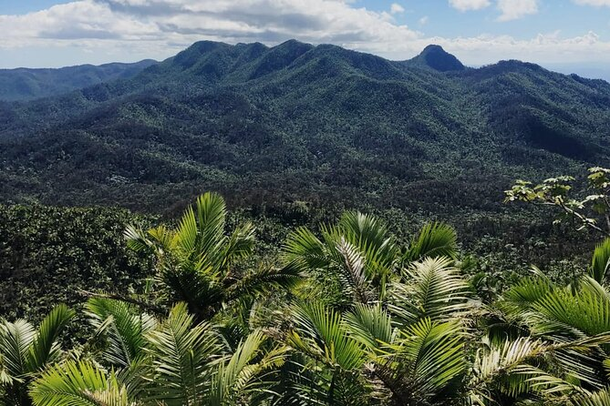El Yunque Rainforest, Waterslide, Beach, Dine and Shop Adventure with transport