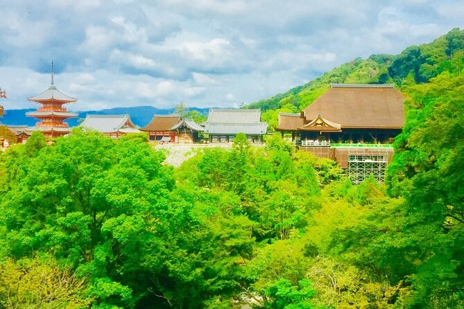 Full-Day Private Guided Tour to Kyoto Old Town and Temples