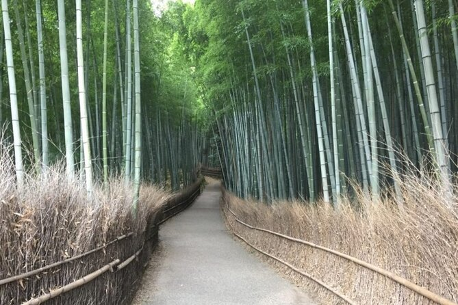 Full-Day Private Guided Tour in Kyoto, Arashiyama: Temple and Nature