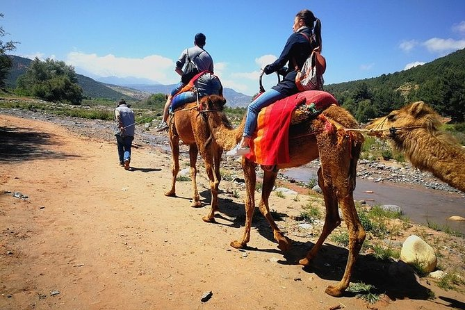 Atlas Mountains and Three Valleys & Waterfalls with Camel ride Day Trip