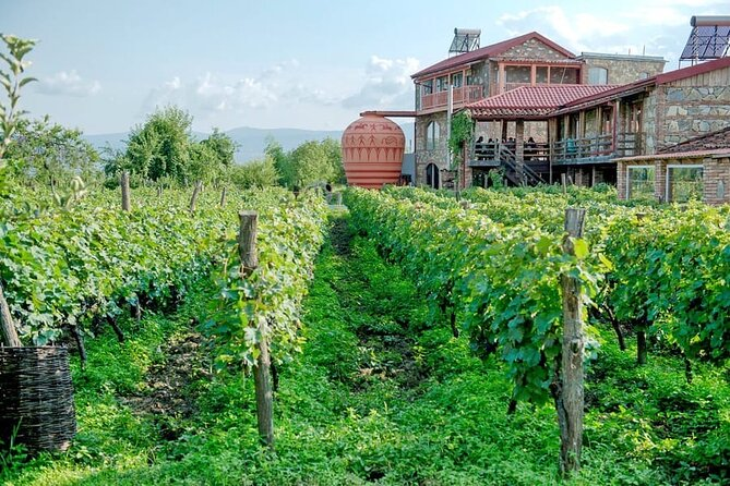 Day trip to Kakheti with lunch