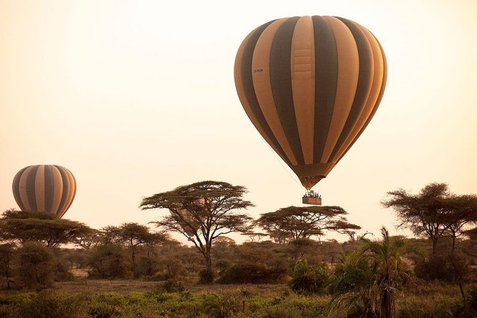 Hot Air Balloon Ride in Serengeti - With - Burigi Chato Safaris Co L.T.D
