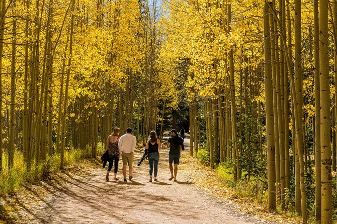 Private Guanella Pass Fall Colors Tour