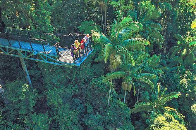 Tamborine Mountain Daily Service, Treetop Challenge and Thunderbird Park
