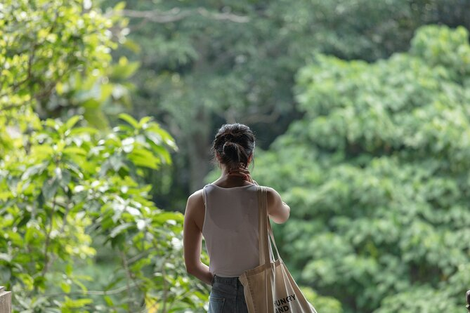 Full day Tour to Best of Ubud with jungle swing
