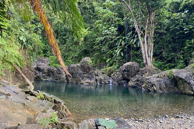 Tinajas Hiking Adventure to El Yunque Rainforest